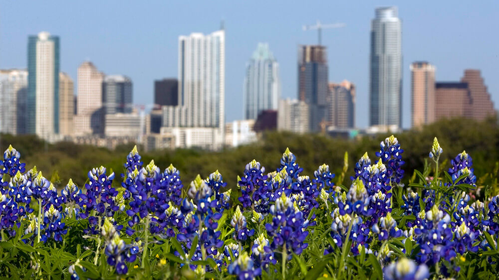 Preparing your Garage Door in Spring in Austin Texas